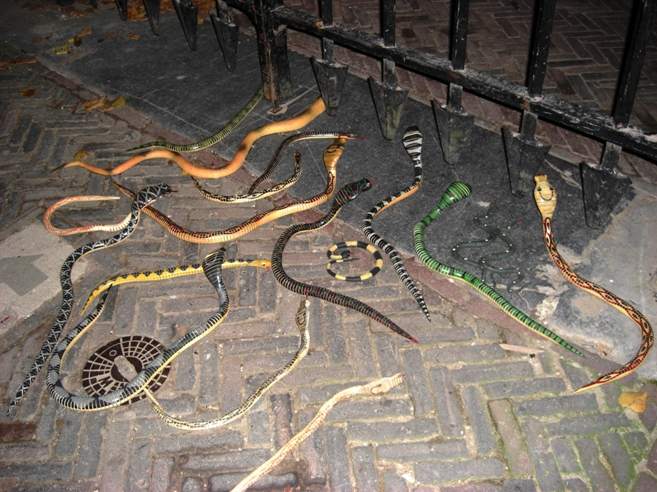 cobra slangen onderweg snakes serpents Mijn kunstslangen