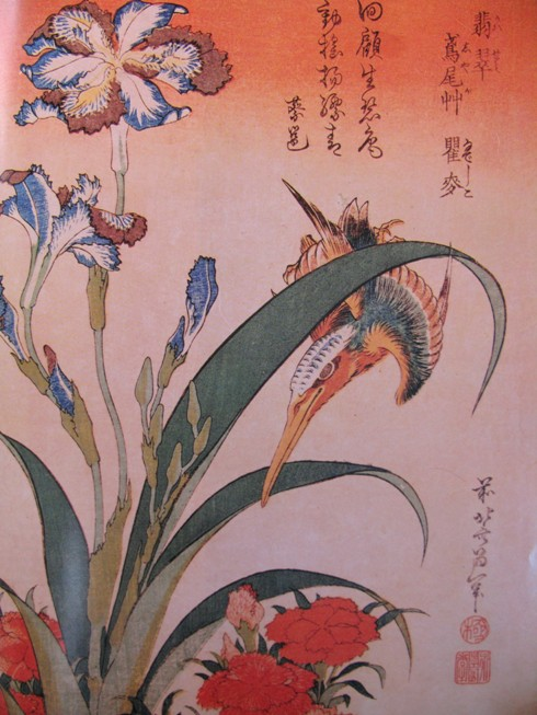 japanese prints japanse prenten hokusai kingfisher shaga iris Iris bloem in de kunst 