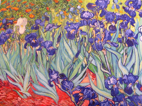 vincent van gogh irissen 1889 Iris sprookje/Iris bloem/ Vincent Van Gogh en anderen