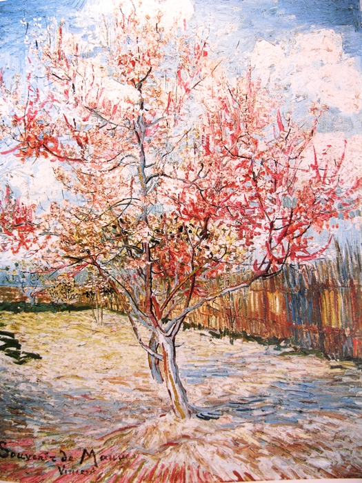 Vincent van Gogh, Bloeiende perzikbomen, 11 april 1888 peachtrees