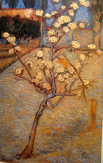 Vincent van Gogh, Perenboom in bloei